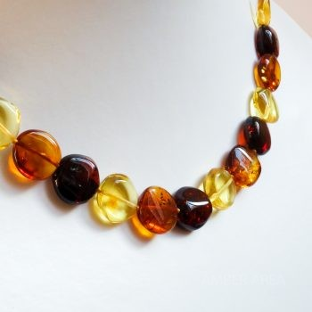 Flat Round Three-Color Amber Necklace