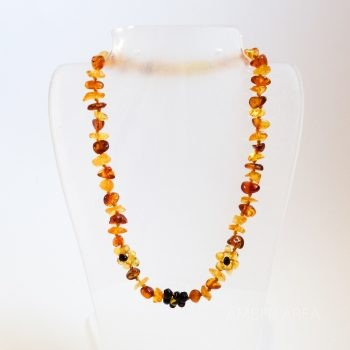 Amber Flowers Multi-Color Necklace For Kids
