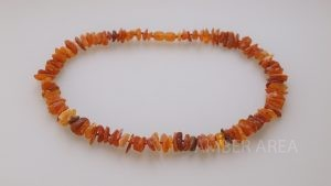 Baltic Amber Pet Necklace